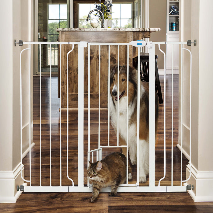 Carlson Pet Extra Tall Gate with Slide Handle