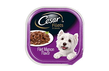 CESAR® Filet Mignon Flavor 3.5oz