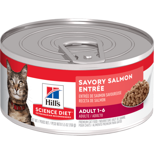 HILL'S SCIENCE PLAN Adult Cat Food with Salmon