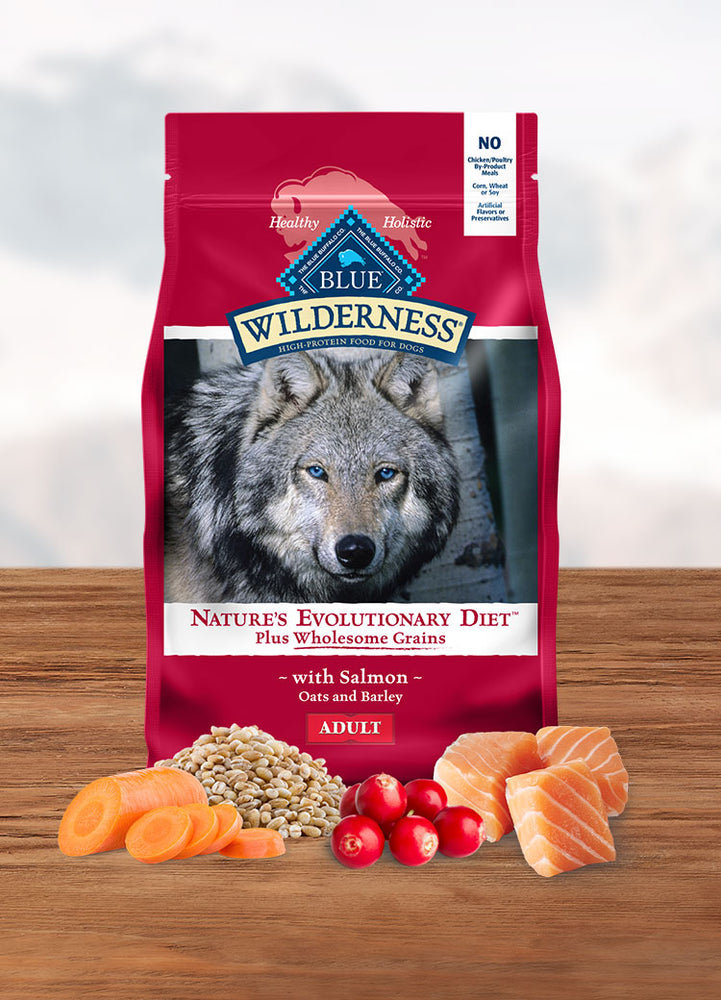 BLUE Wilderness™ Adult Dog Salmon with Grains Recipe