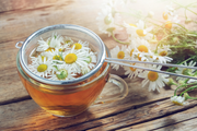 Chamomile tea made fresh from the garden