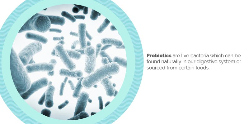 Definition of Prebiotics and Probiotics