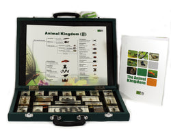 T1019<br />Animal Kingdom II Collection