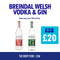 Breindal Gin & Vodka Bundle 2 for £20