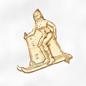 Sports and Chenille Pins - Skier Female