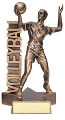 Billboard Series Male Volleyball Resin 6-1/2  or 8-1/2  inch