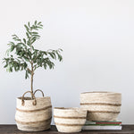 Maize Baskets / Plant Baskets / Basket Planters (set of 3)