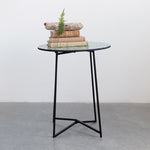 Glass Plant Stand with Metal / Table with Metal Legs