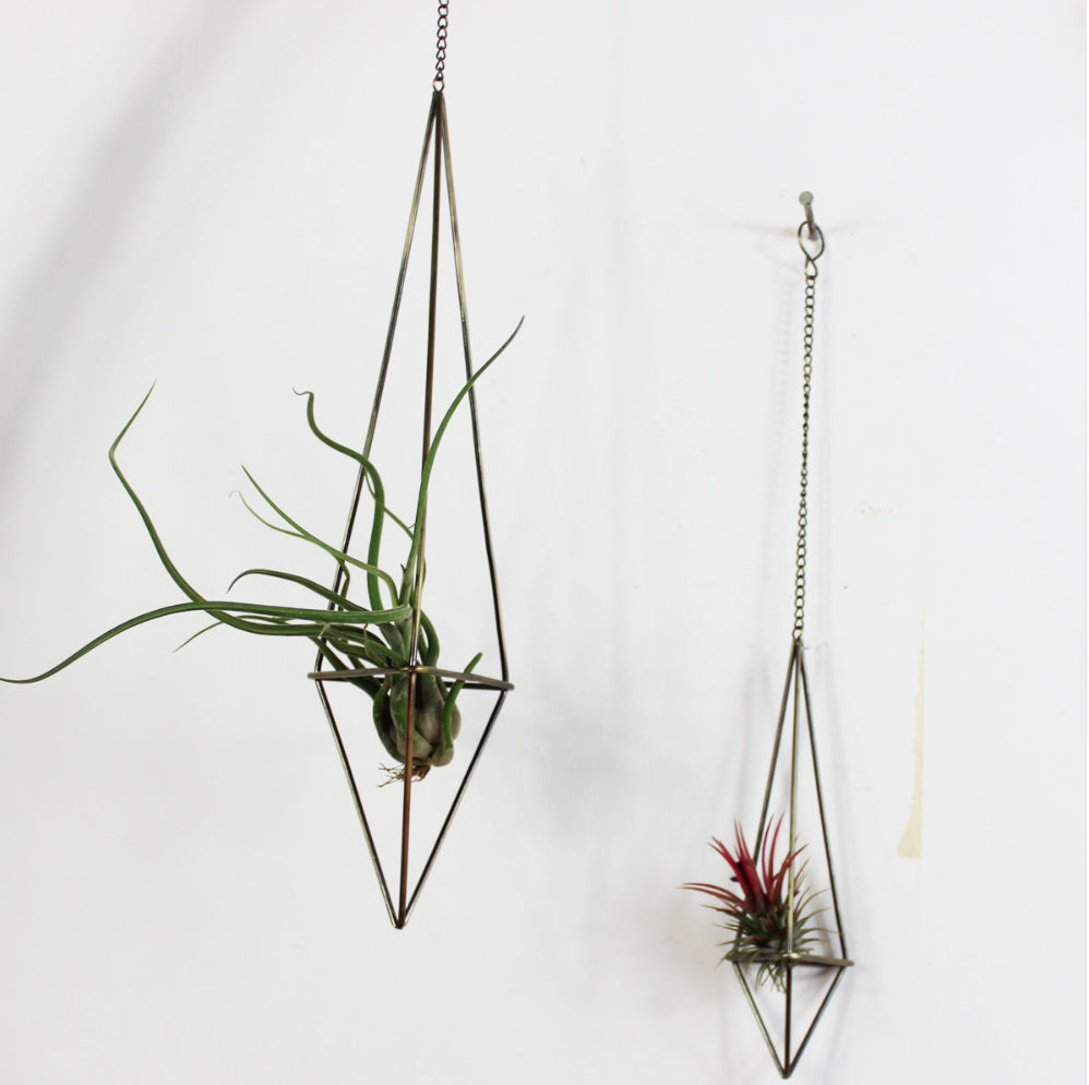 Metal Hanging Air Plant Holder