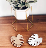 Catch All Monstera Dish / Air Plant Holder / Monstera Jewelry Dish