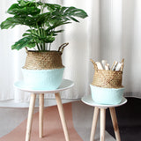 Handmade Seagrass Flower and Plant Pot With Handles