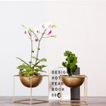 Golden Planter and Plant Stand