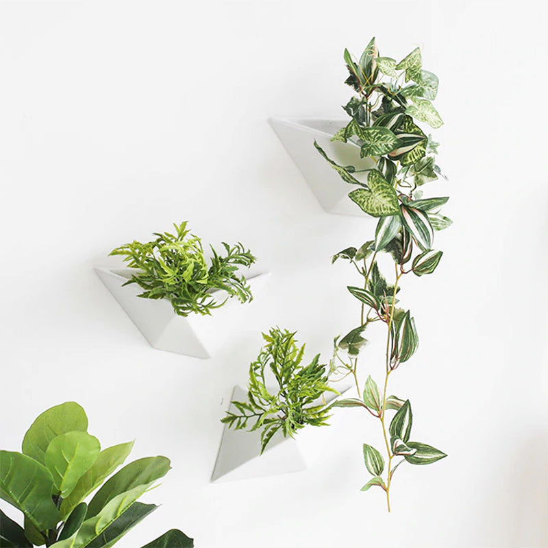 Sleek Hanging Wall Planter / Hanging Wall Vase