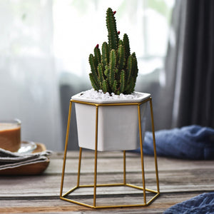 Modern Ceramic Planter Pot with Metal Stand