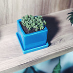 Square Planter with Saucer