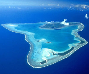 Belize Diving Package: Turneffe Atoll Diving - ExistTravels