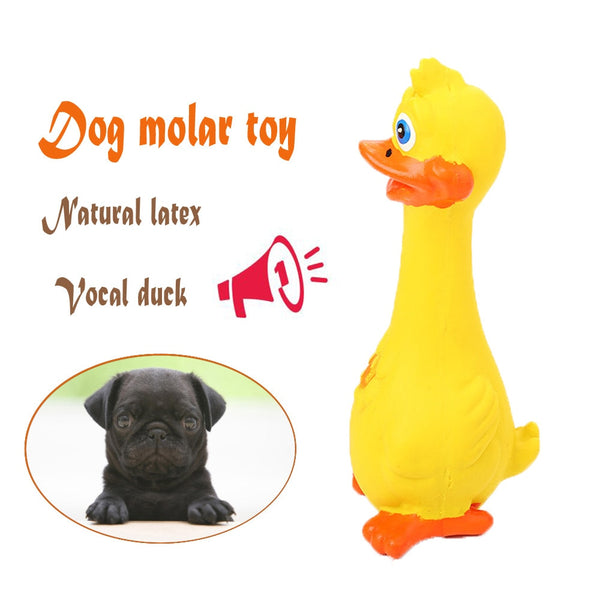 New 18cm Lovely Dog Toys Funny Yellow Rubber Chicken Pet Chew Honking Squeaking