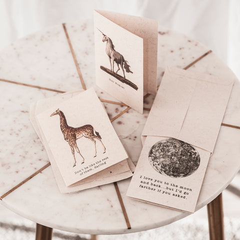 Greeting Cards & Accessories