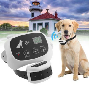 Wireless Electric Dog Fence