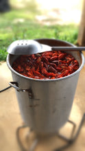 Load image into Gallery viewer, Pot of boiled crawfish (c) At The Land