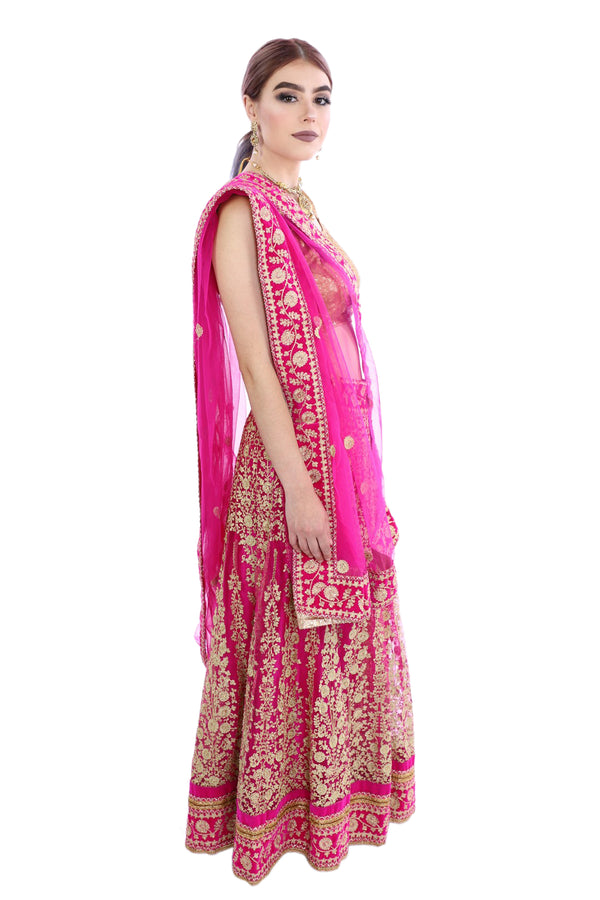 Starstruck Pink and Gold Embroidered Lehenga - G1191