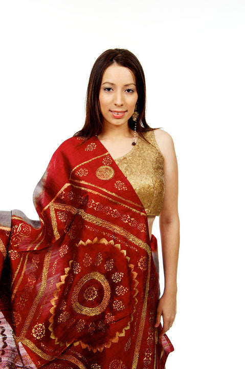 Royal Red and Grey Sari