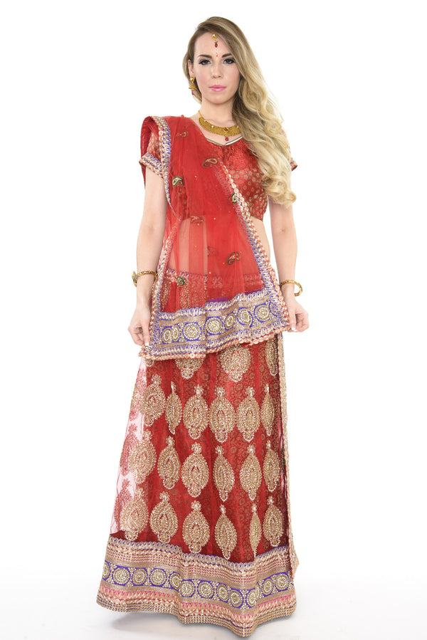 Elegant Red and Gold Indian Wedding Lehenga