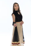 Luxurious Black Velvet Lehenga