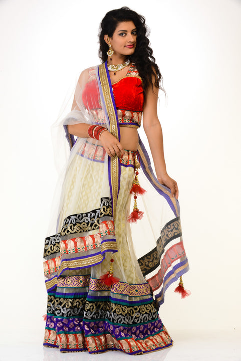 Sizzling Party-wear Lehenga Choli