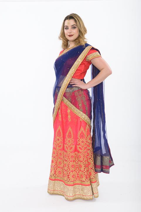 Pink and Blue Silk Lehenga - Side Full