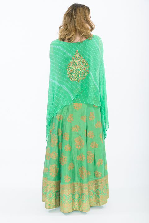 Mint Green Cape Style Anarkali Gown