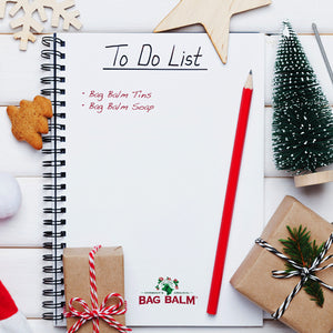 Christmas Wish List Ideas 2019