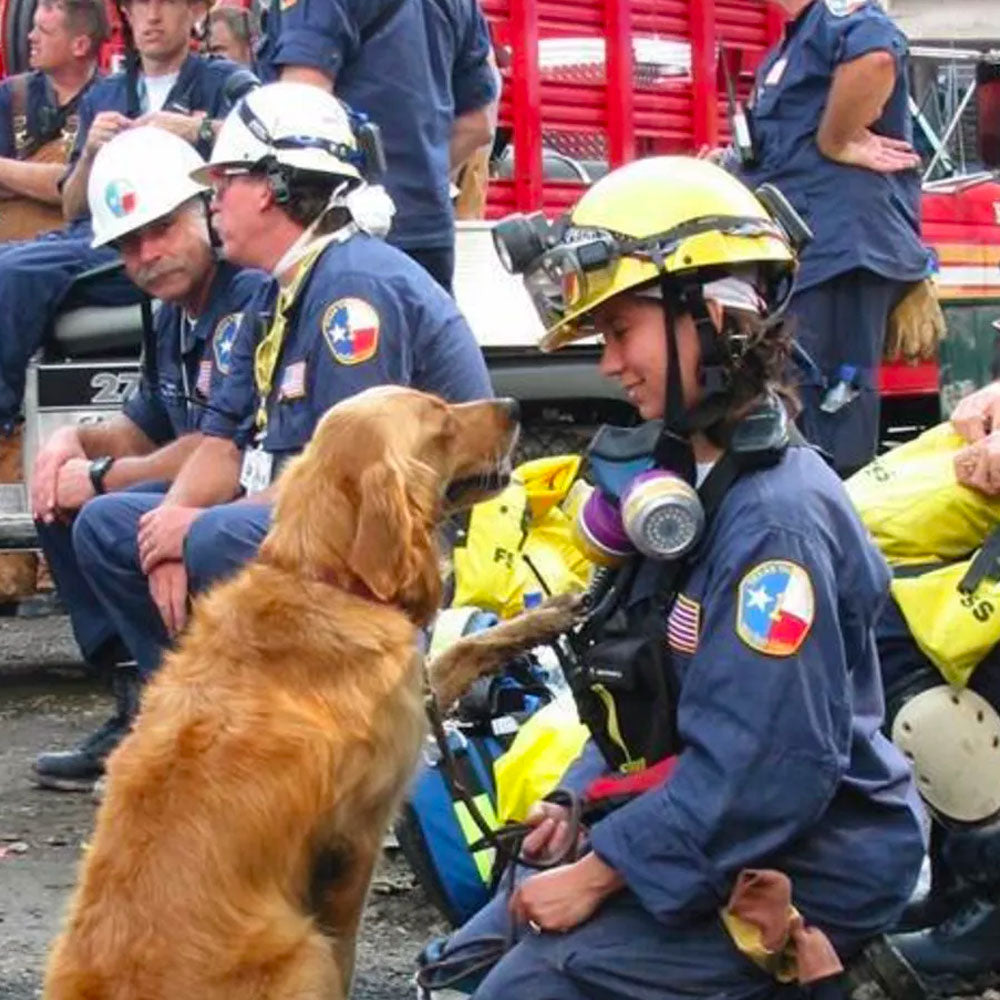Final Salute To 9/11 Rescue Dog