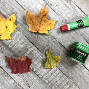 Embracing Fall With Bag Balm