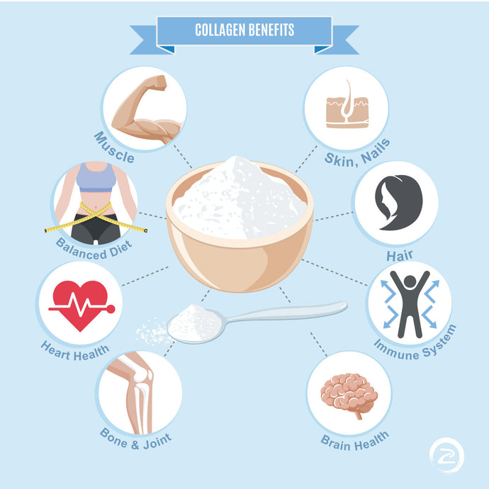 Proven Benefits of Collagen Supplementation