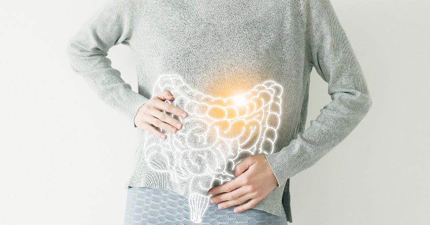 Filled with bacteria, neurotransmitters, receptors, the gut is intimately involved in more than just digesting our food.
