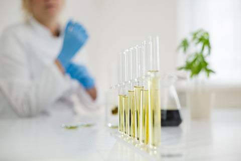 Research shows CBD may be effective against ME/CFS symptoms like fatigue, sleepless, and pain.