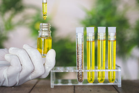 Third-party CBD oil testing looks for a variety of contaminants, such as mold, heavy metals, and pesticides.