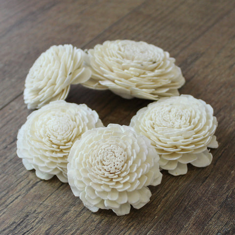 "Image of Bali - 12 Pack - 2.5"" - Wood Flowers Co."