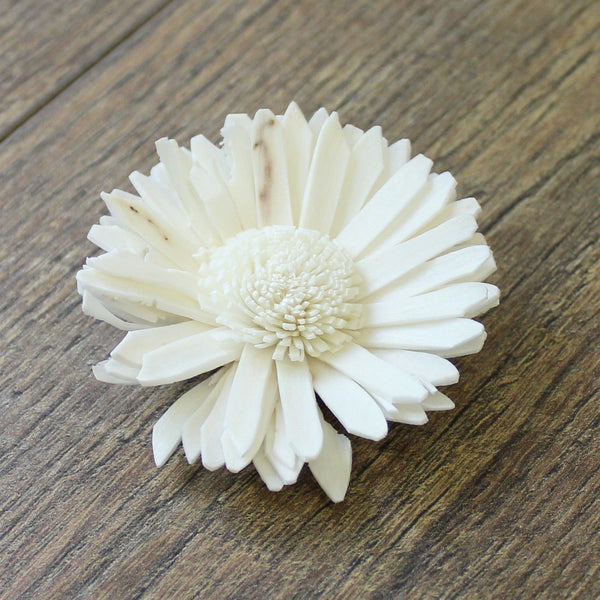 "Daisy - 12 Pack - 2.5"" - Wood Flowers Co."