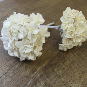 Hydrangea - 1 each - Wood Flowers Co.