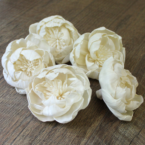 "Peony with Stamen - 2.5"" - Wood Flowers Co."