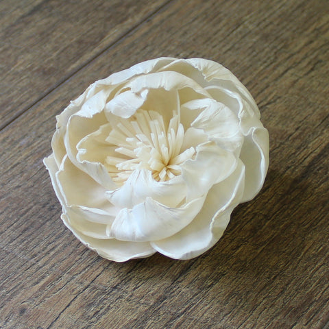 "Peony with Stamen - 3"" - Wood Flowers Co."