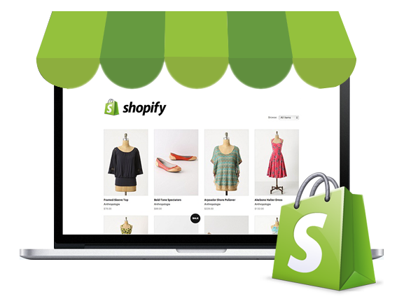 Shopify Website Build
