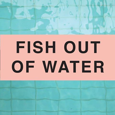 Fish Out Of Water Book