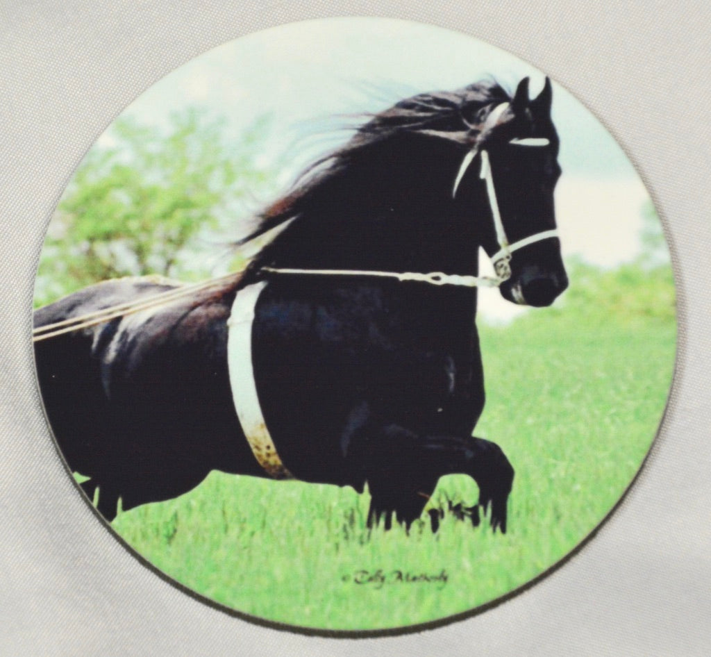 Friesian Coaster