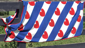 Friesian Flag Fleece Cooler