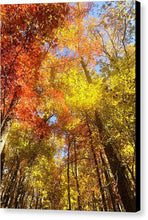 Load image into Gallery viewer, Fireworks In A Fall Sky - Canvas Print