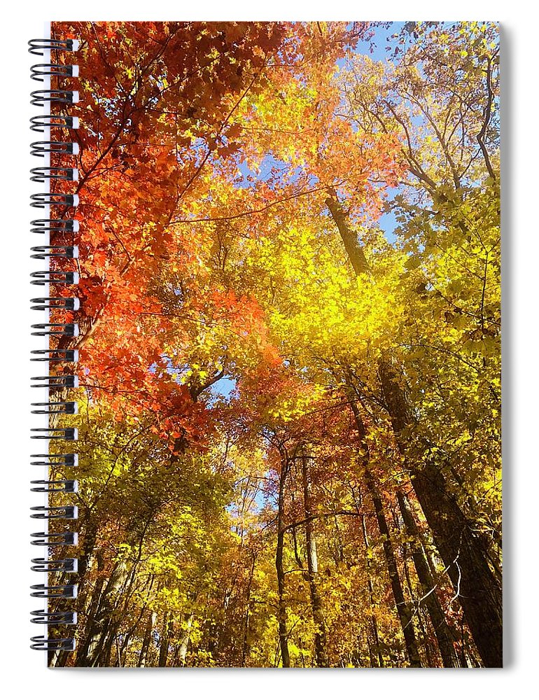 Fireworks In A Fall Sky - Spiral Notebook