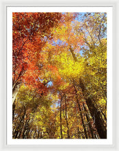 Load image into Gallery viewer, Fireworks In A Fall Sky - Framed Print